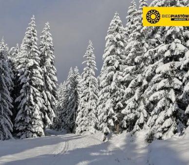 +10 cm śniegu w Jakuszycach!
